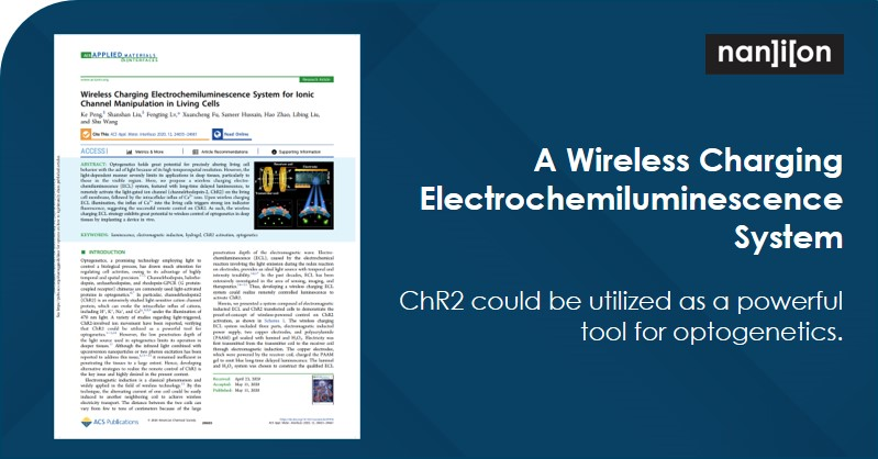 31.07.2020: Publication Alert - ChR2 could be utilized as a powerful tool for optogenetics