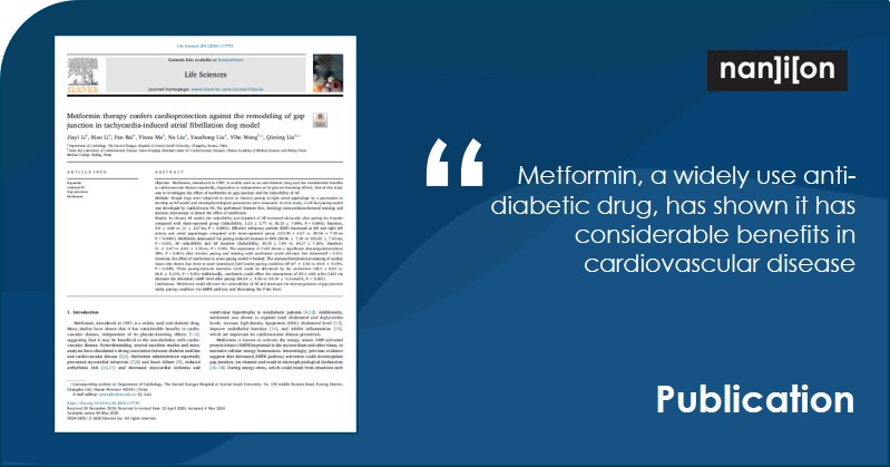 04.08.2020: Publication Alert - Metformin therapy confers cardioprotection against the remodeling of gap junction in tachycardia-induced atrial fibrillation dog model