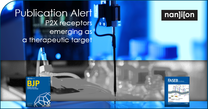 26.02.2020: P2X receptors emerging as a therapeutic target. As featured in BPS and FASEB Journal