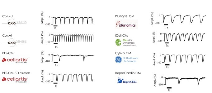 CardioExcyte different Providers