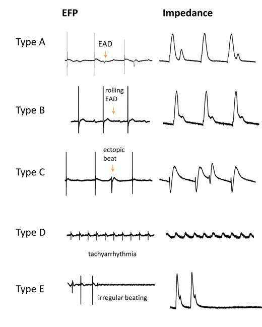 cellrhythmias EFP modes
