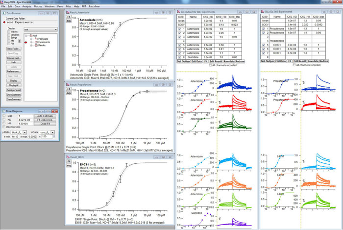 hERG Screenshot Data Analysis Tool 1 700